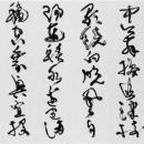 5-fukuda-n44