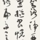 13-iwasawa