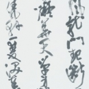10理事 菅野東紅