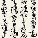 7koyama