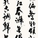 09hasegawa