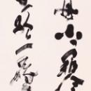 若林昇仙.jpg