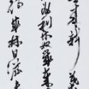 第15回滴仙会書法展 (橋本光仙)