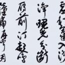 第15回滴仙会書法展 (山野一穂)