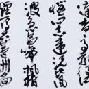 第15回滴仙会書法展 (竹中清蘭)