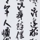 第15回滴仙会書法展 (北 泰華)