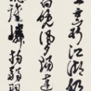 長谷川奈緒美