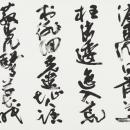 第34回読売書法展 大島靖月