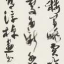 26 hasegawa