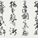 29 wakabayashi