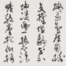 29-wakabayashi