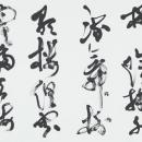 11理事 若林采嬌