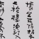 022大賞 林碧瑶