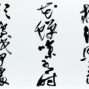 58-shibazaki