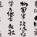 8hayashi01