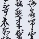 第15回滴仙会書法展 (高野華游)