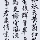 第15回滴仙会書法展 (中尾艸淺)
