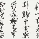 13新井秀泉