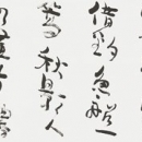 第34回読売書法展 沼田碧漣