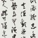 10菅野東紅