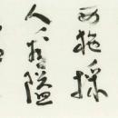 第45回日本の書展 (17.中林笋渕)