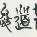 第45回日本の書展 (6.若林采嬌)