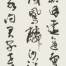 13 iwasawa